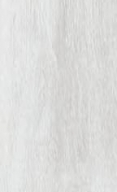 0286-sunny-white-v